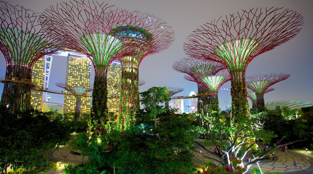 가든스 바이 더 베이 을 보여주는 나이트라이프, 야경 과 공원