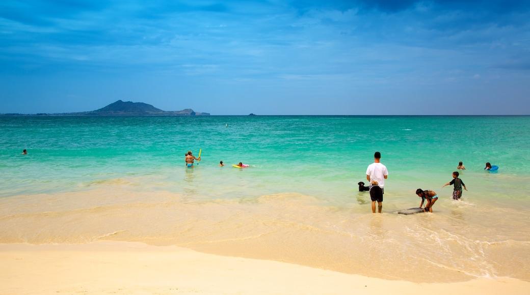 Kailua Beach which includes a sandy beach, swimming and landscape views