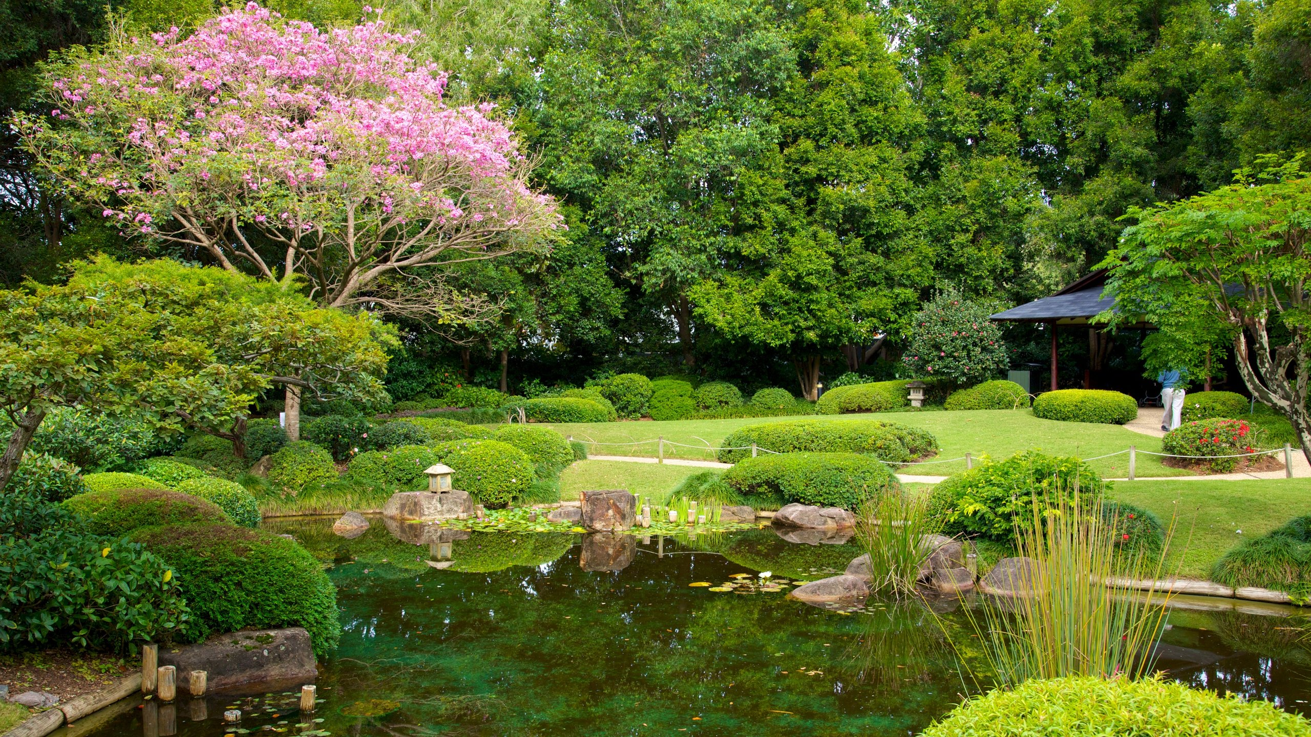 Denna vackra gratispark har promenadstråk genom frodiga tropiska regnskogar, bonsaiträdgårdar och även en konstgjord lagun med vattenagamer och sköldpaddor.
