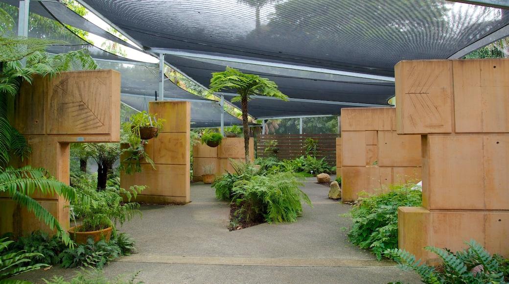 Brisbane Botanic Gardens which includes a park and interior views