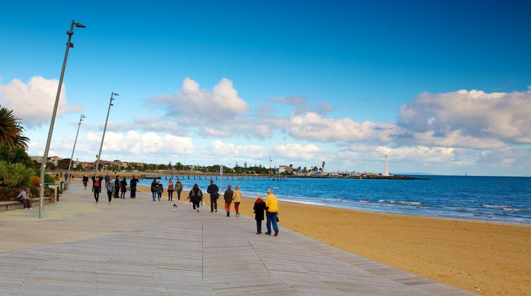St. Kilda Beach showing a sandy beach and tropical scenes