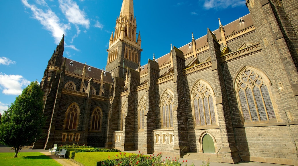 St Patrick\'s Cathedral showing a church or cathedral and religious aspects