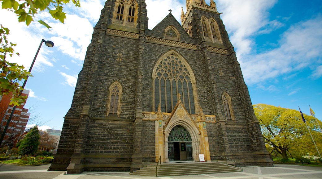 St Patrick\'s Cathedral featuring a church or cathedral, religious elements and a city