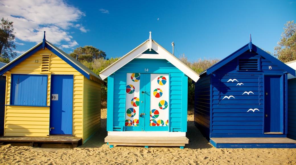 Brighton Beach which includes a sandy beach