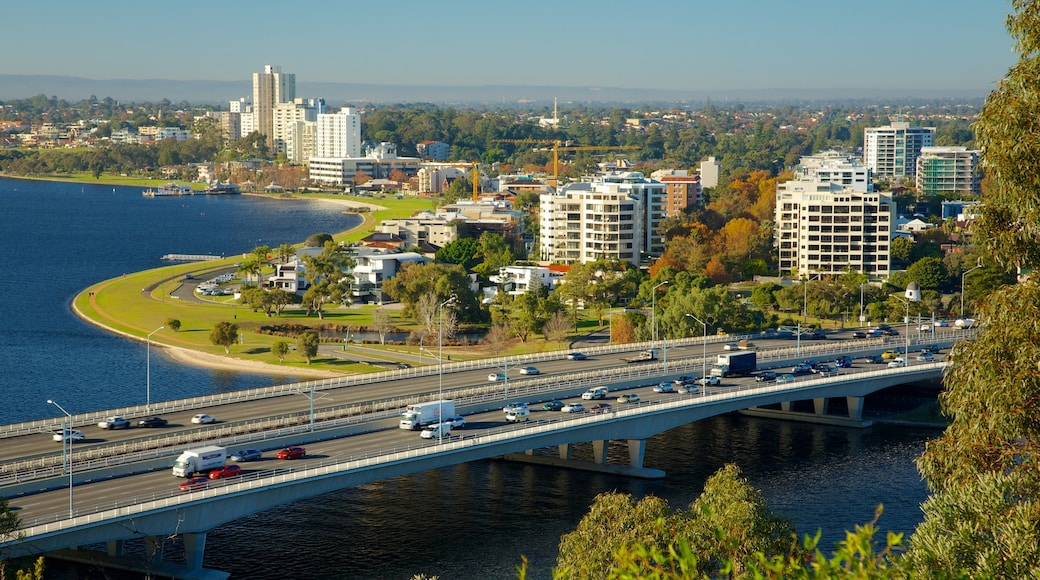 Kings Park und Botanischer Garten welches beinhaltet Brücke und Stadt