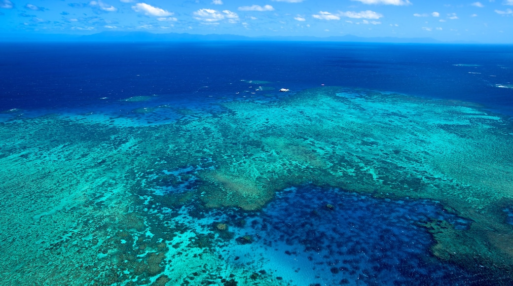 Great Barrier Reef showing landscape views and coral