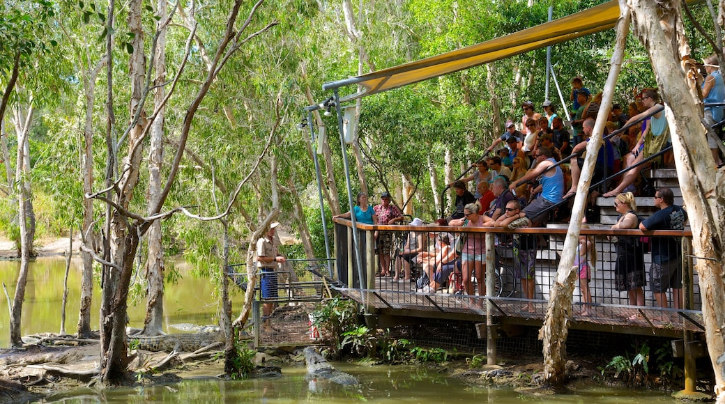 Hartley\'s Crocodile Adventures which includes rides and zoo animals as well as a large group of people