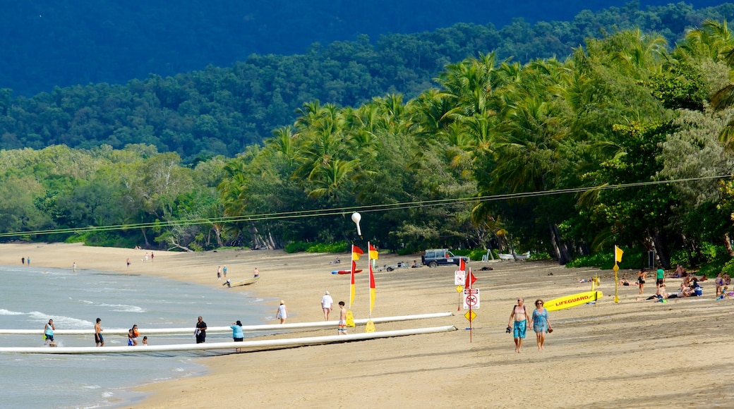 Palm Cove Beach which includes a sandy beach, tropical scenes and swimming