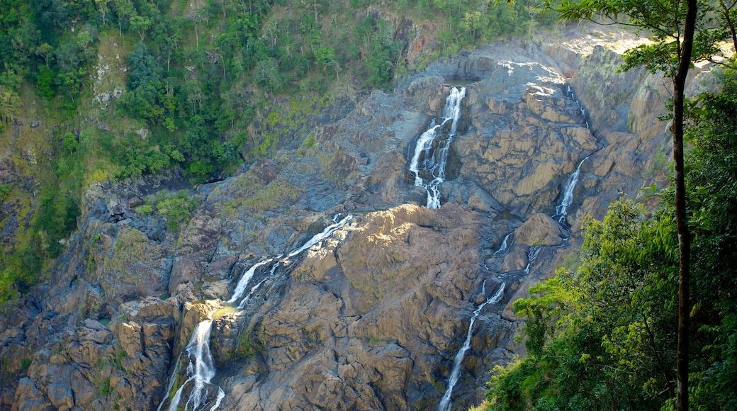 Skyrail Rainforest Cableway toont een cascade en landschappen
