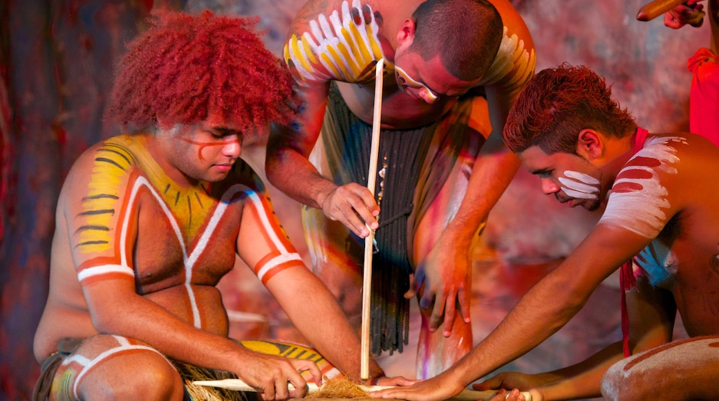 Tjapukai Aboriginal Cultural Park featuring performance art as well as a small group of people