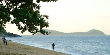Trinity Beach featuring tropical scenes, landscape views and surfing