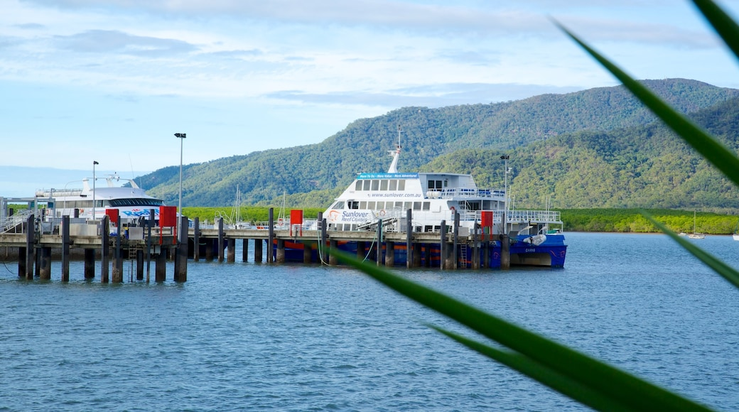 Cairns Marlin Marina showing general coastal views, cruising and a bay or harbour