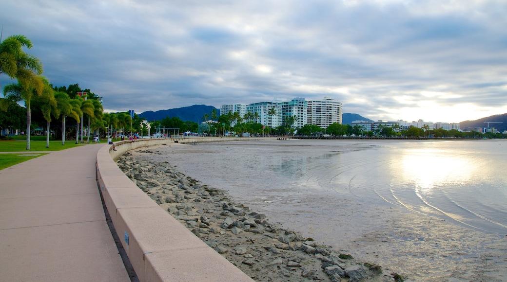 Cairns featuring skyline, a coastal town and a pebble beach