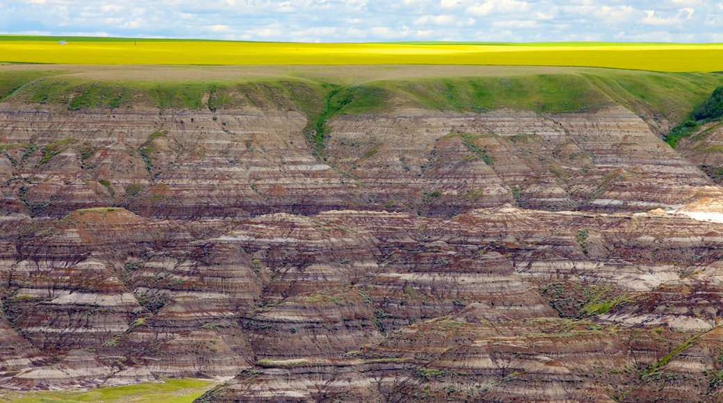 Drumheller Valley featuring landscape views and a gorge or canyon
