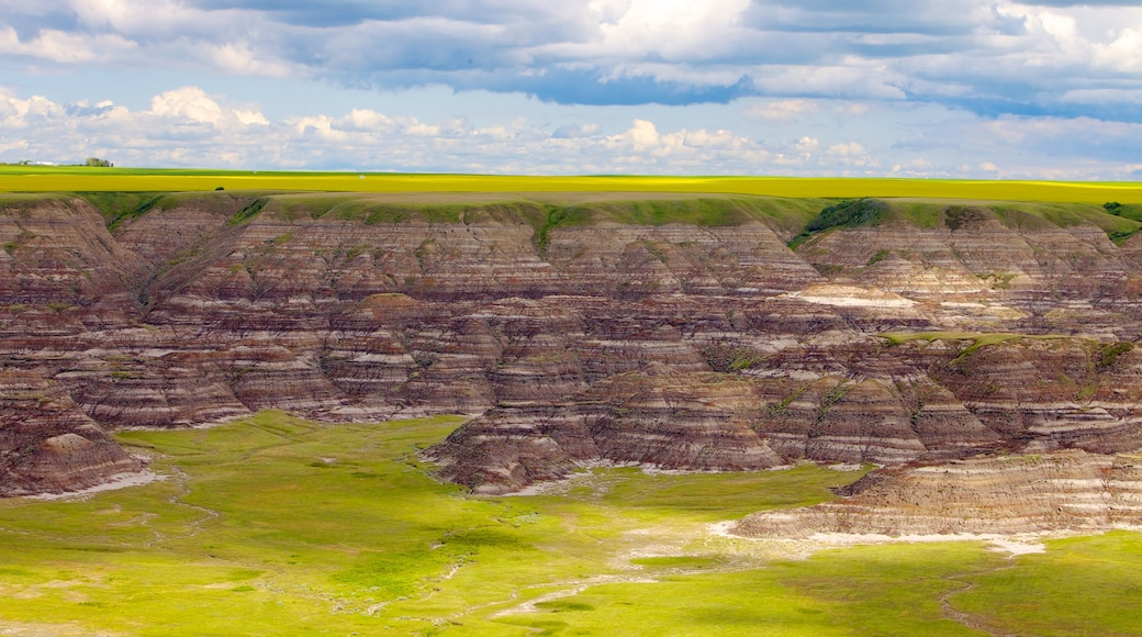 Drumheller Valley which includes landscape views, a gorge or canyon and tranquil scenes