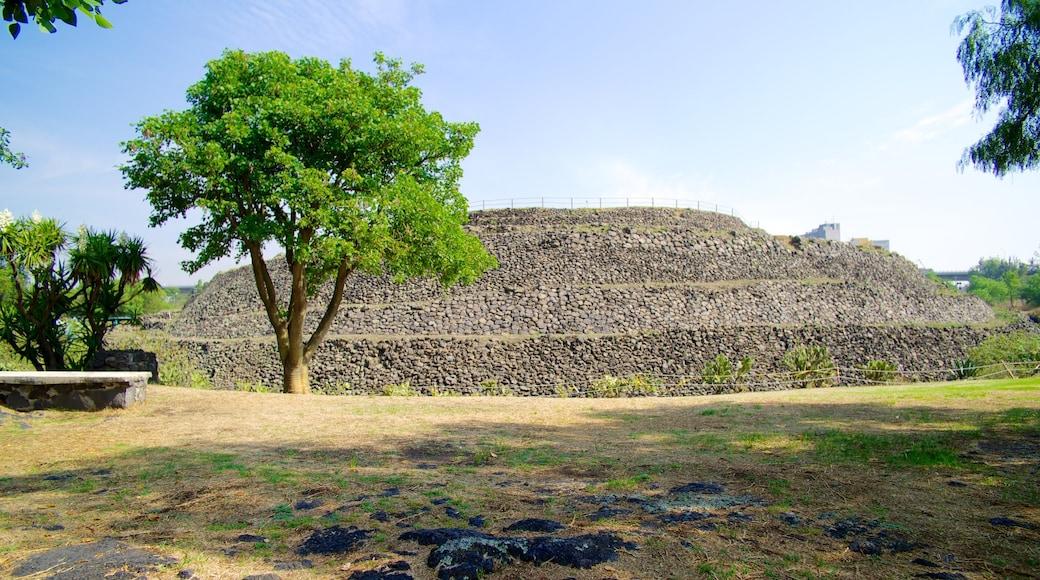 Cuicuilco mostrando rovine e giardino