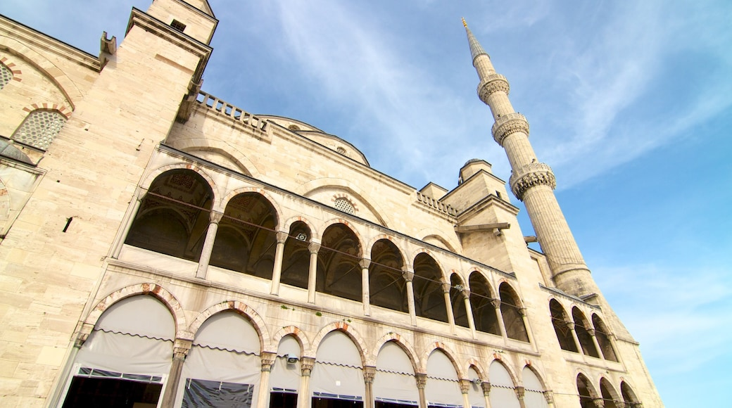 Blue Mosque which includes a mosque and heritage architecture