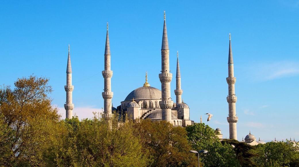 Mesquita Azul caracterizando uma mesquita e arquitetura de patrimônio