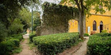 Careggi Rifredi, Florence, Tuscany, Italy