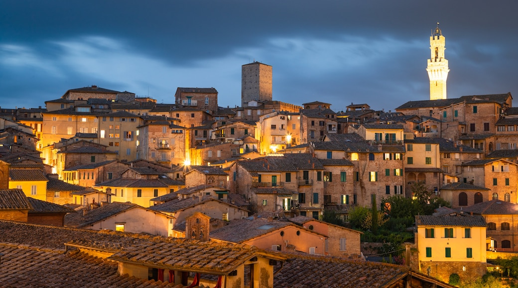 Siena featuring night scenes, landscape views and a city