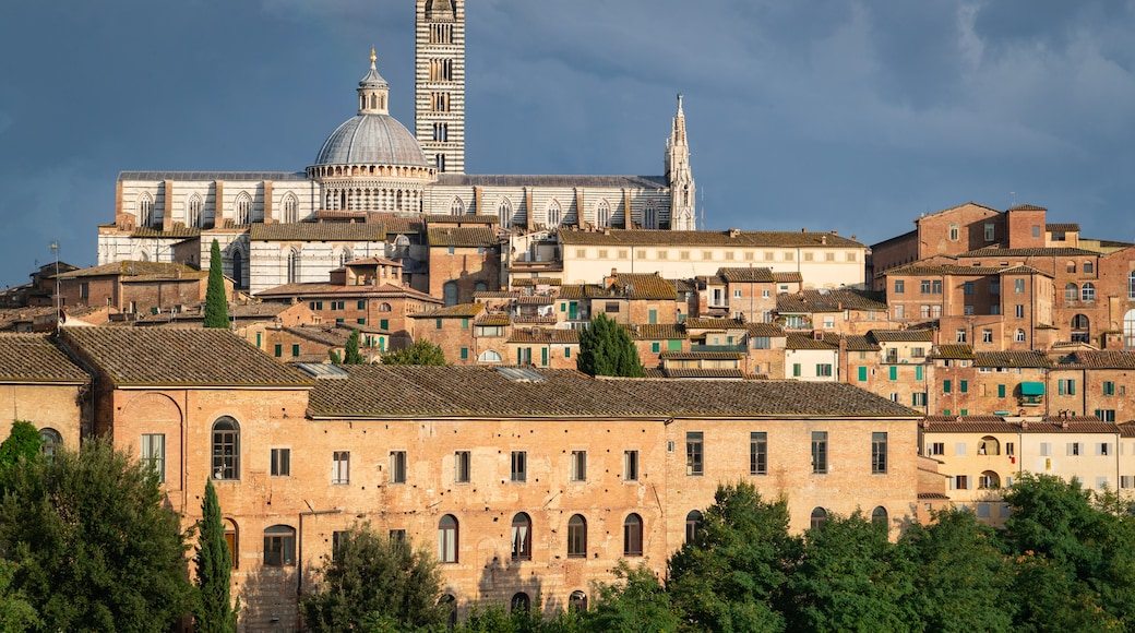 Siena featuring a city, landscape views and heritage architecture