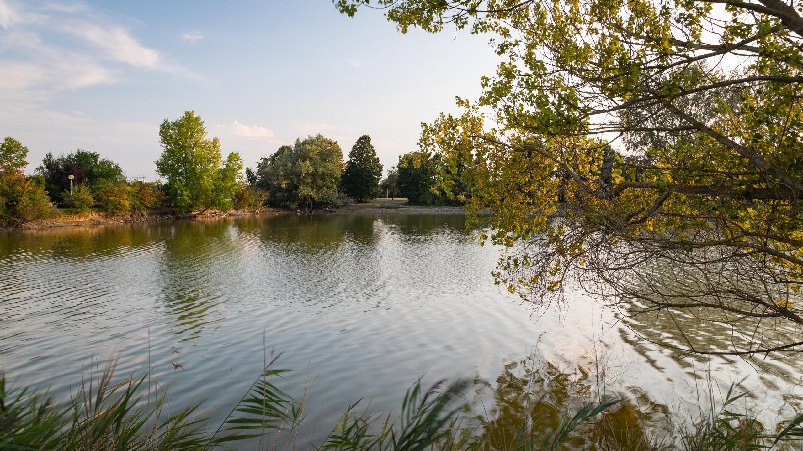 Staunen Sie über die vielfältige Pflanzenwelt von Levante Park, einer bezaubernden grünen Oase in Valverde. Schlendern Sie in dieser angesagten Gegend gemütlich an den wunderschönen Stränden entlang.