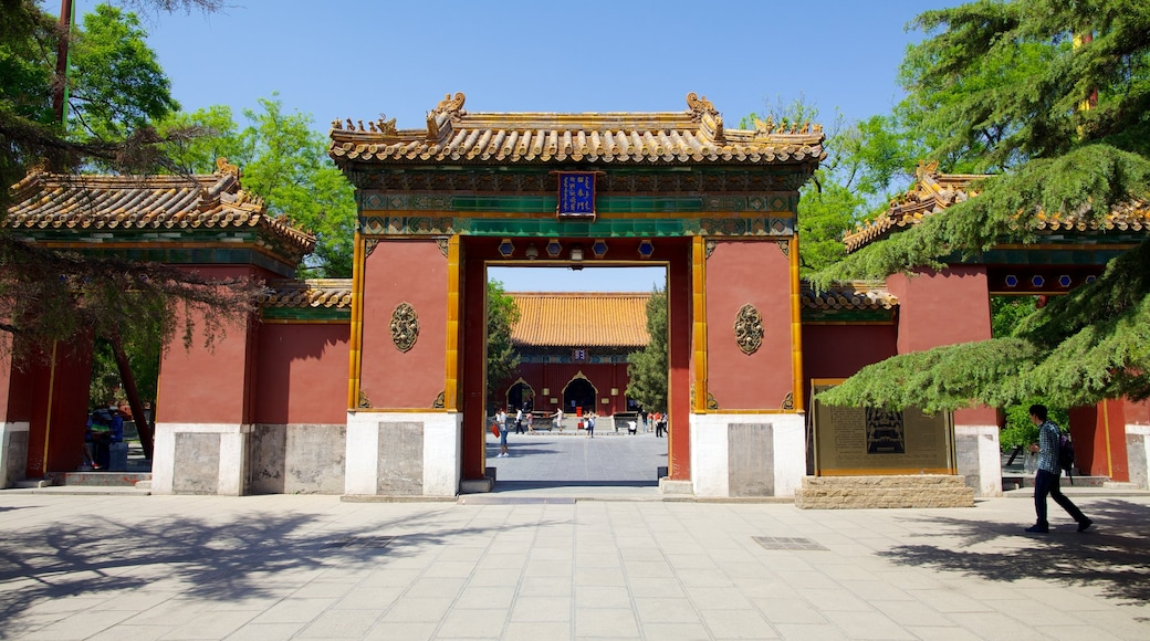 Lama Temple showing a temple or place of worship