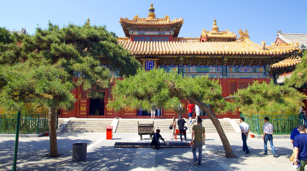 Lama Temple featuring religious aspects, a square or plaza and a temple or place of worship
