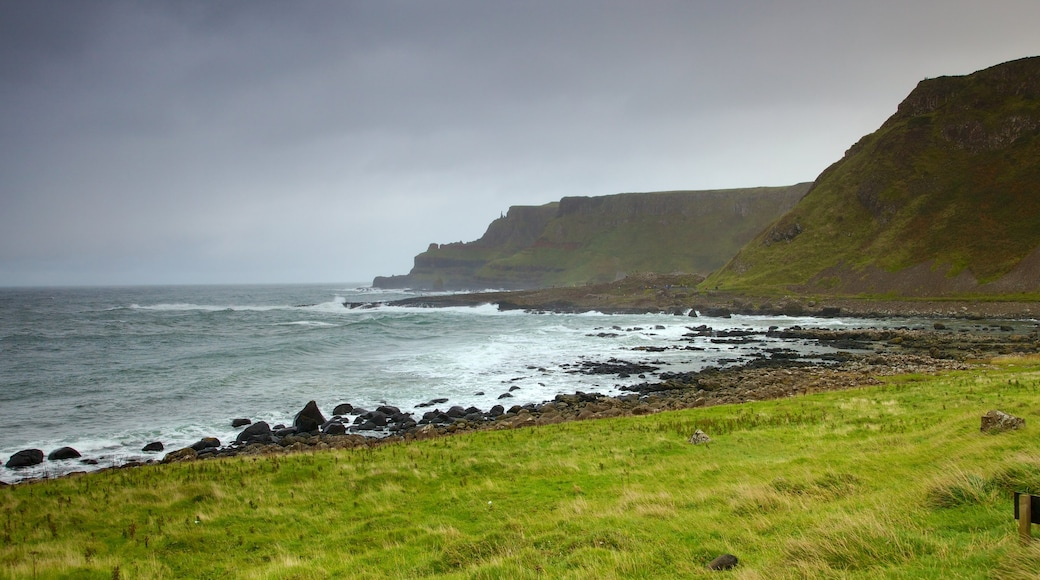 Giant\'s Causeway featuring tranquil scenes, landscape views and a gorge or canyon