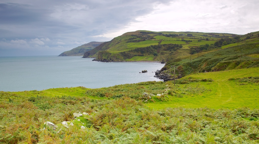 Torr Head showing landscape views, rugged coastline and tranquil scenes