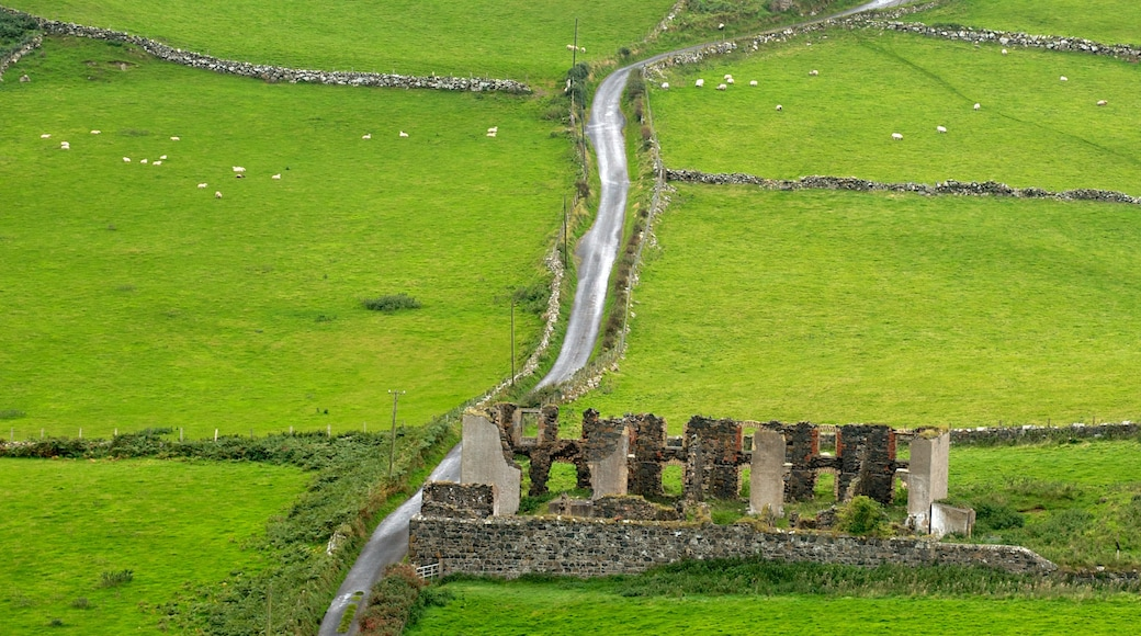Torr Head showing building ruins and tranquil scenes