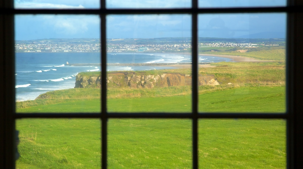 Mussenden Temple which includes rocky coastline, heritage architecture and general coastal views
