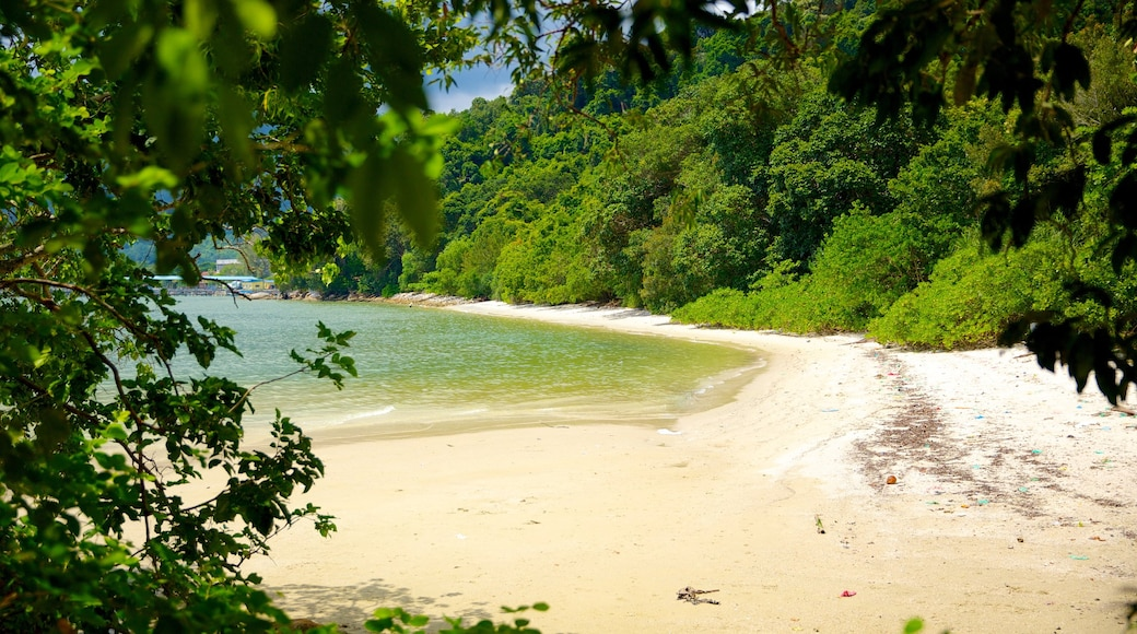 Penang National Park showing forests and a sandy beach