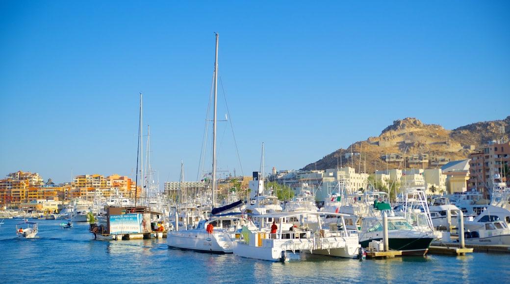 Marina Cabo San Lucas mostrando canoagem e uma marina