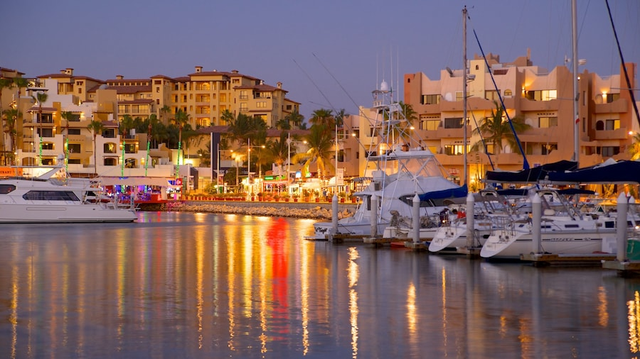 Marina Cabo San Lucas which includes a marina, a coastal town and night scenes