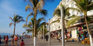 Malecón que incluye una ciudad costera, escenas urbanas y mercados