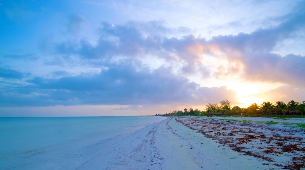 Holbox que incluye una puesta de sol, vistas de paisajes y una playa