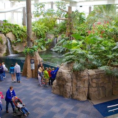 Pittsburgh Zoo and PPG Aquarium