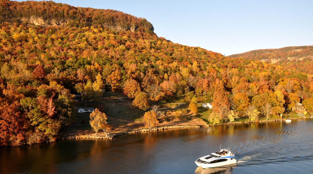 Chattanooga featuring forest scenes, fall colors and mountains
