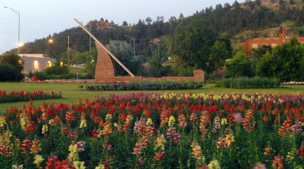 Rapid City featuring wild flowers, flowers and a garden