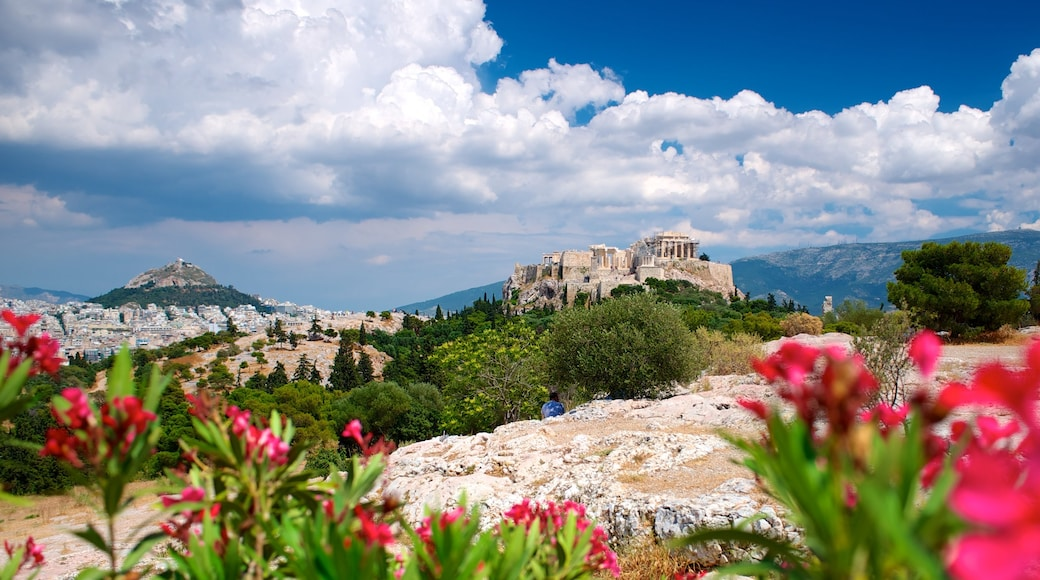 Acropolis featuring wild flowers, flowers and heritage architecture