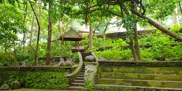 Ubud Monkey Forest showing a temple or place of worship and rainforest