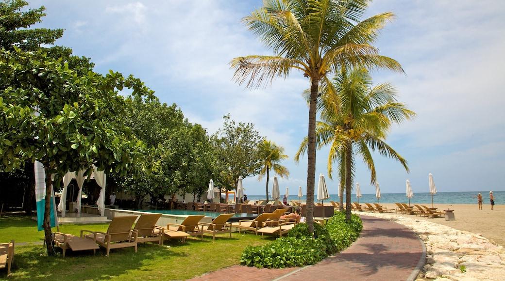 Kuta montrant scènes tropicales, plage et hôtel ou complexe de luxe