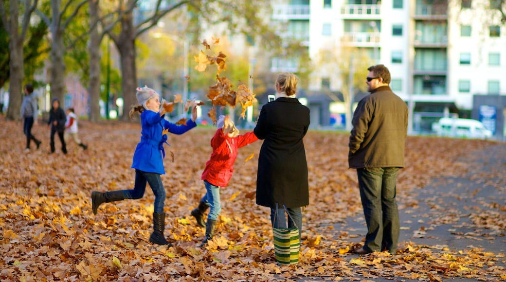 Carlton Gardens featuring a garden and autumn colours as well as a family