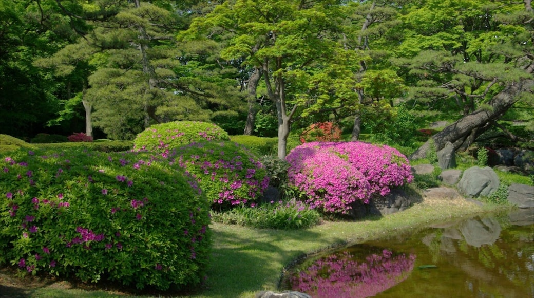 Tokyo Imperial Palace featuring a garden