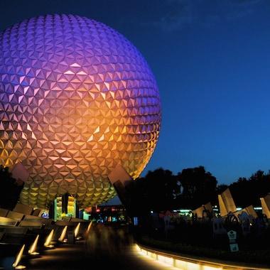 Walt Disney World® area