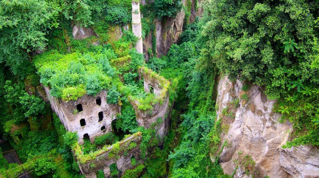 Il Vallone dei Mulini joka esittää trooppiset näkymät, rakennuksen rauniot ja perintökohteet