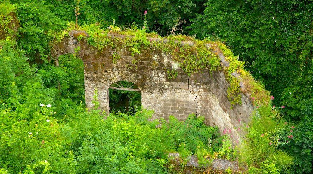 Il Vallone dei Mulini johon kuuluu rakennuksen rauniot, trooppiset näkymät ja perintökohteet