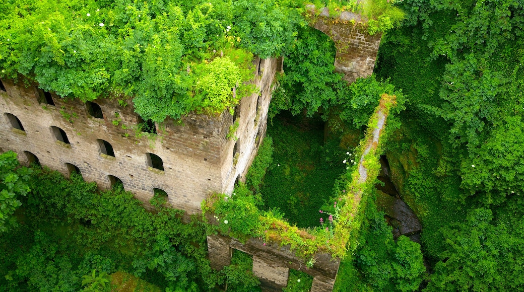 Il Vallone dei Mulini featuring perintökohteet, rakennuksen rauniot ja trooppiset näkymät