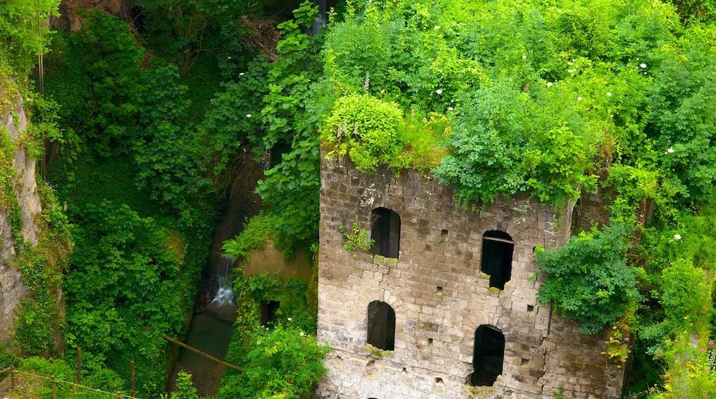 Il Vallone dei Mulini featuring raunio, perintökohteet ja trooppiset näkymät